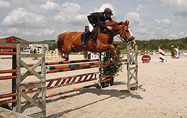 centre equestre l'ile verte